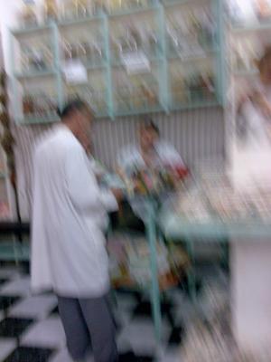 Tangier trip herbalist