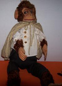 Gentleman monkey