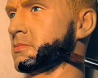 Sas beard